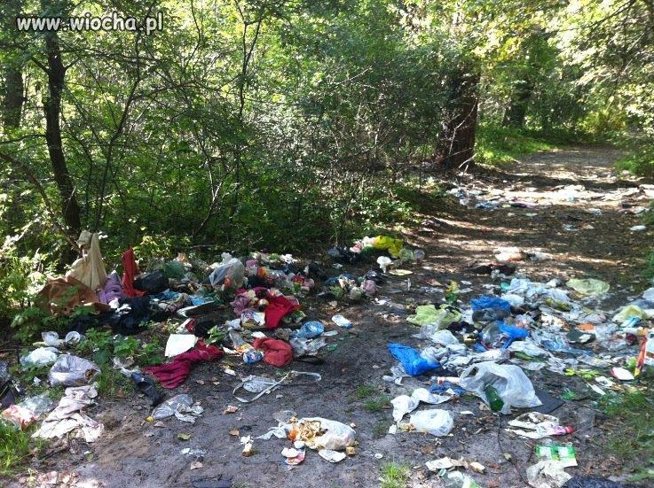 Stop śmieciom w lasach