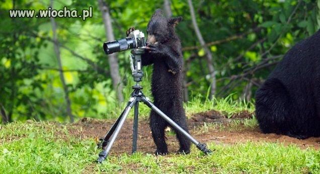 Mały fotoreporter :)