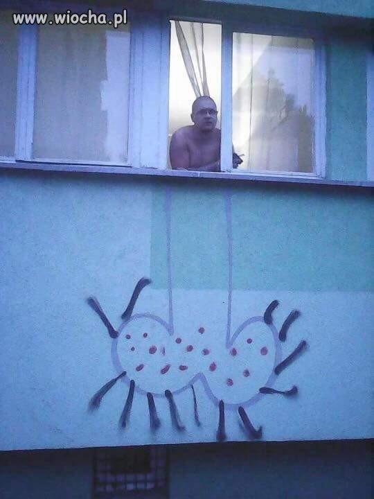 Seeebaaa!!! Wyjrzyj przez oknooo!!!