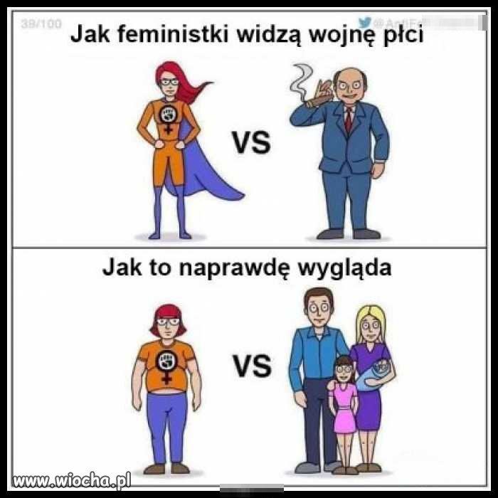 Dość dyktatury kobiet! Dość dyktatury kobiet!