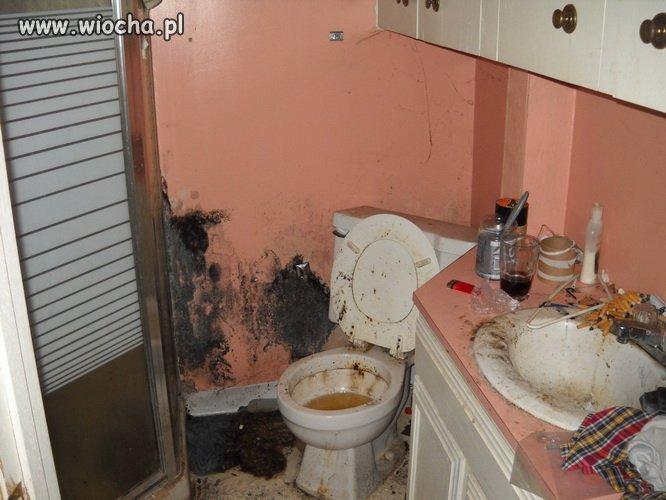 Kuchnia i toaleta w jednym