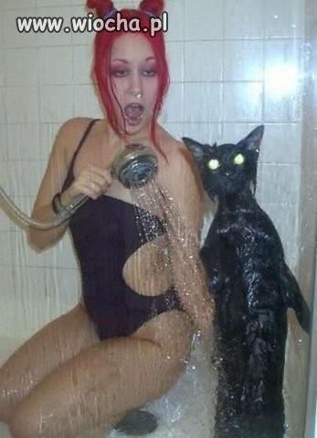 Czego ten kot się boi