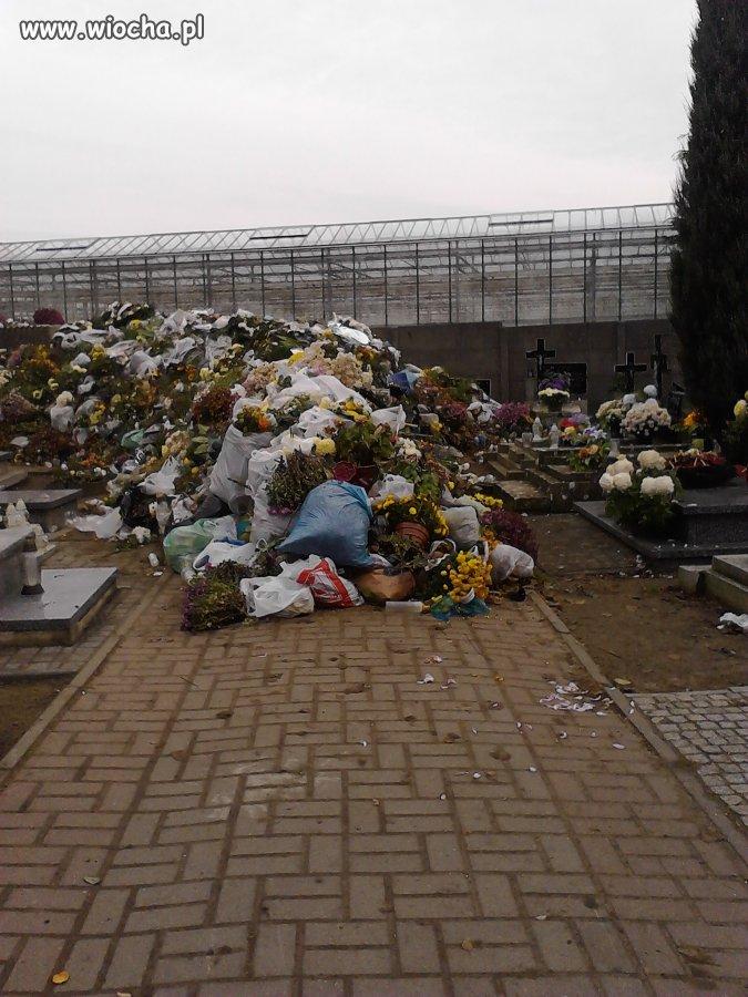 Kultura i porządek na cmentarzu