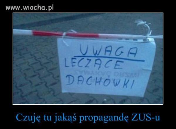 Język Polski być trudny...
