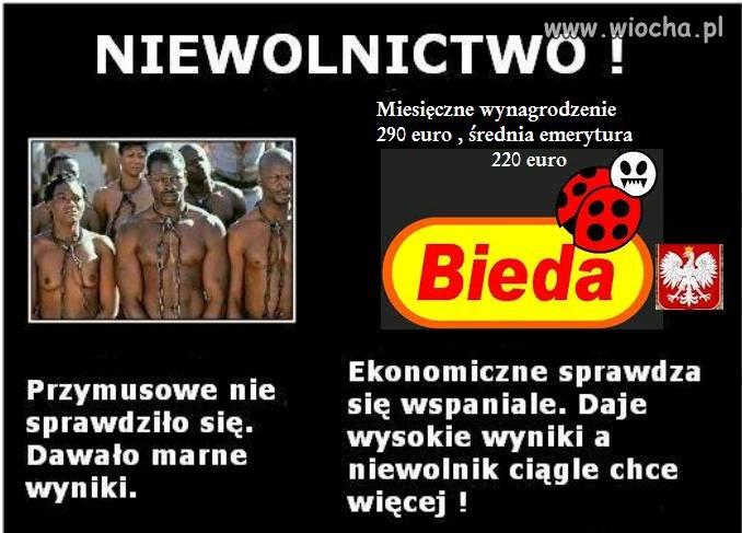 Niewolnictwo w Polsce wypłata 290 euro