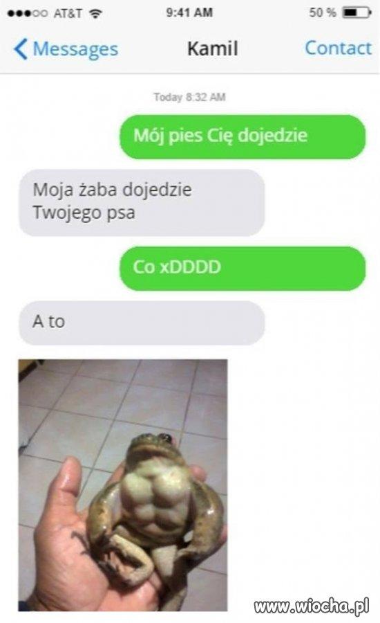 Strzeż się żaby
