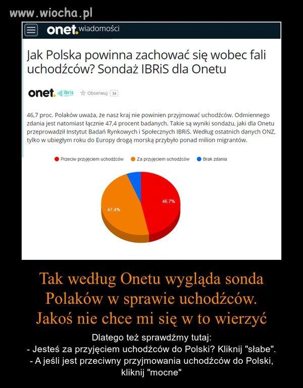 Polska nie powinna przyjmować uchodźców.