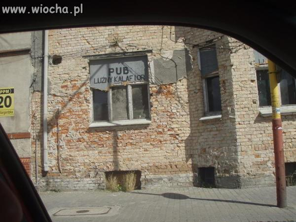 Pub - Luźny kalafior