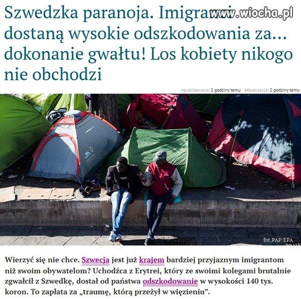 Szwecja przebiła w absurdzie samego Bareję...