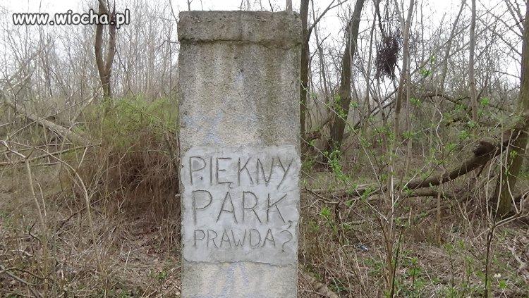 Piękny park ?