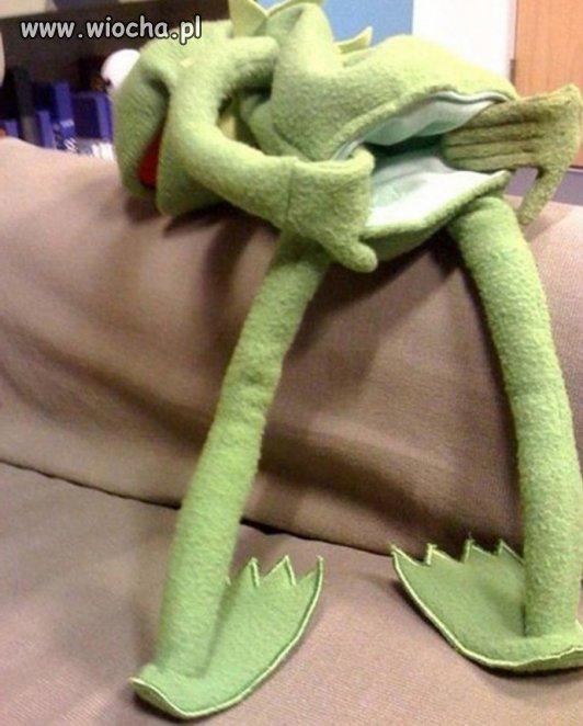 Kermit żaba pozdrawia administracje