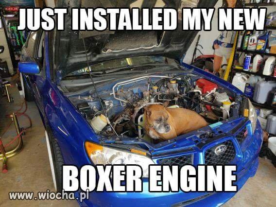 Czy warto kupić Subaru z dieslem