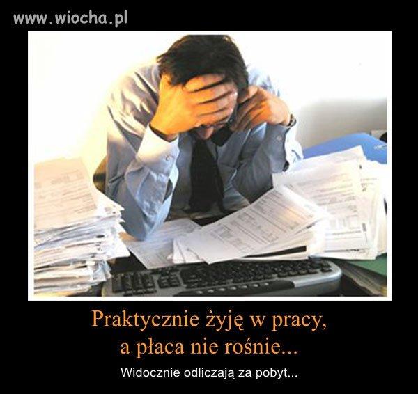 Polacy, jeden z najciężej pracujących narodów