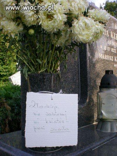 Hienom cmentarnym zdecydowane NIE!!!