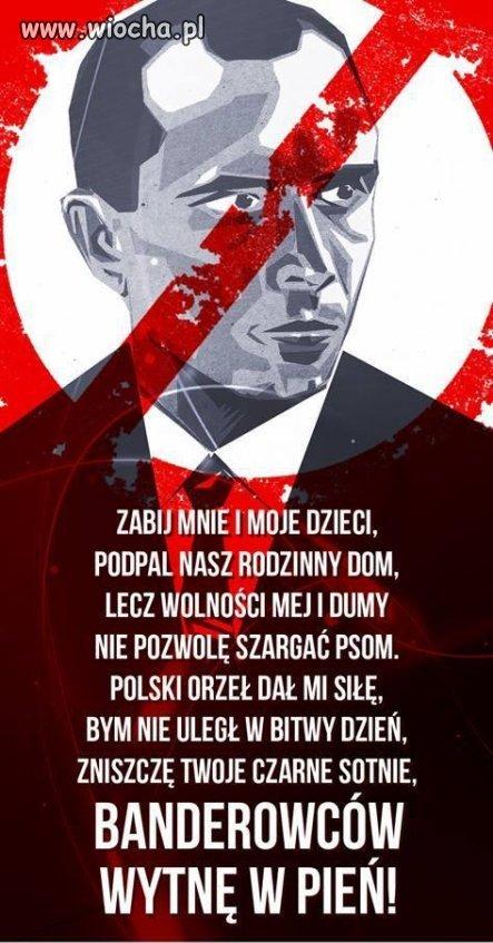 A teraz szukaj� pomocy u Polak�w