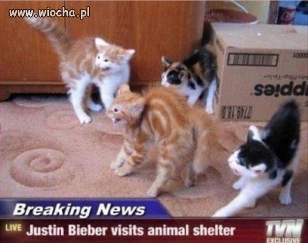 Bieber z wizytą