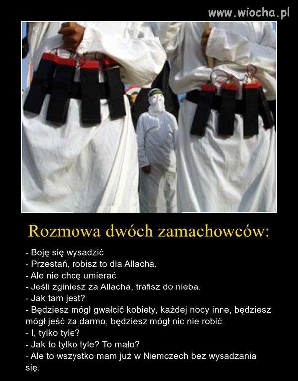 http://img.wiocha.pl/images/b/6/b694712c0adffa015c67d1091020dc19.jpg