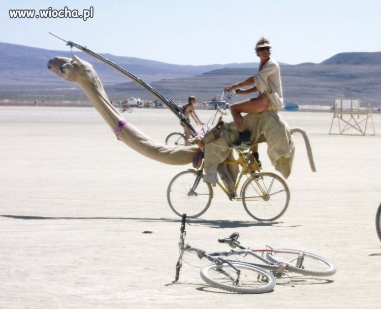 CAMELBIKE