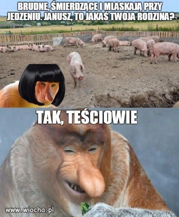 Janusz gasi Grażynę...