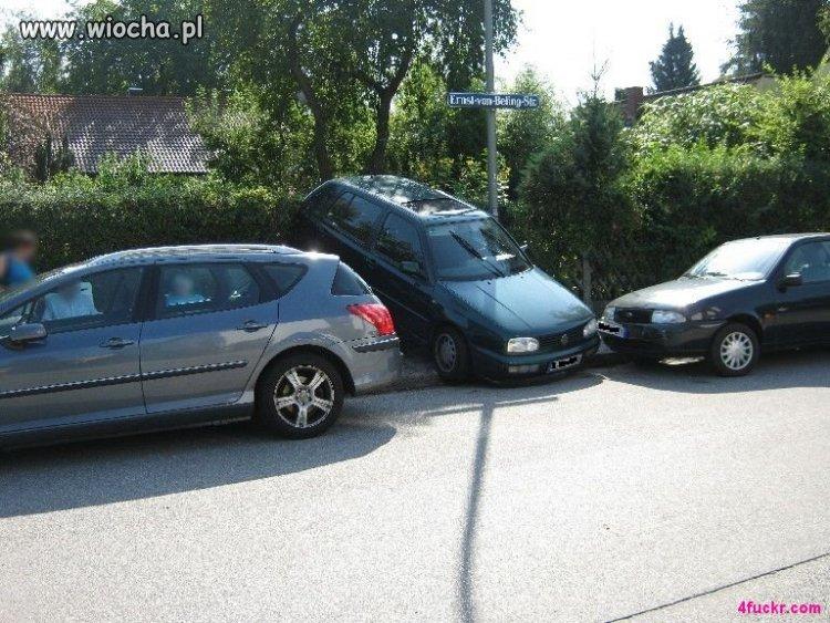 Mistrz parkownia