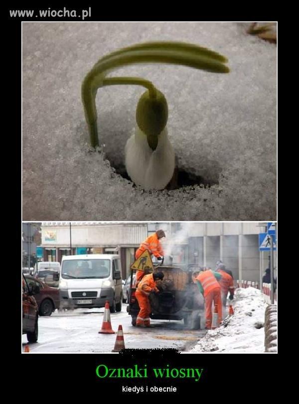 Jakie s� pierwsze oznaki Wiosny w Polsce?