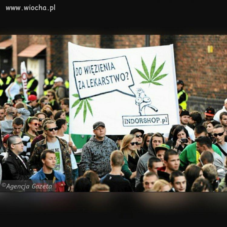 Legalizacja medycznej marihuany.