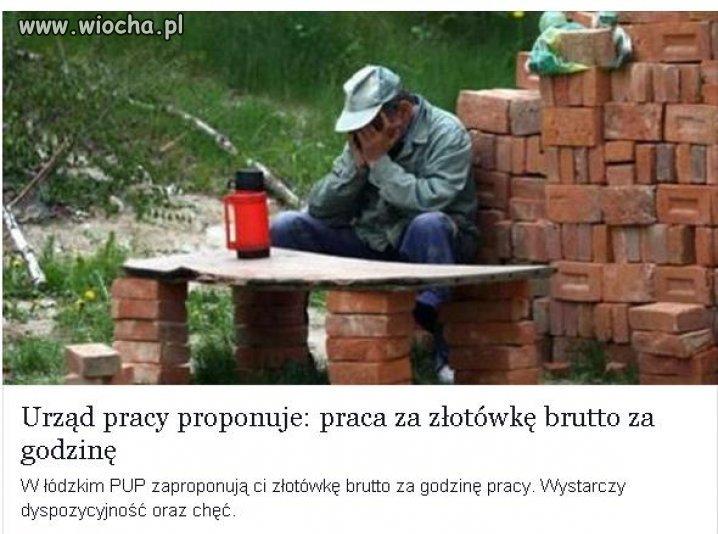 Polacy wracajcie z tej emigracji!!!