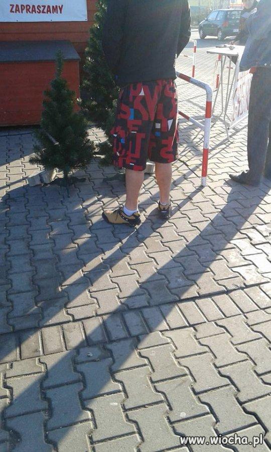 23 grudnia, koleś kupuje choinkę