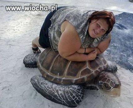 Żółwie żyją do 300 lat, ale są wyjątki.