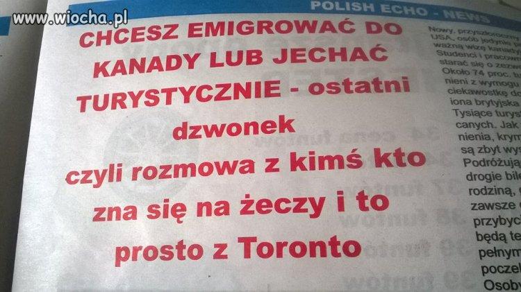 A na języku polskim się nie zna...