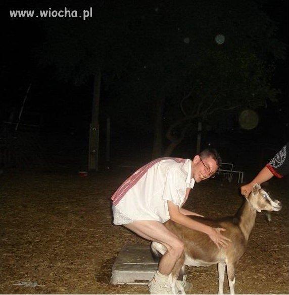Zabawa z kozą