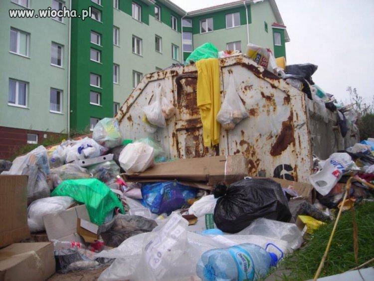 Tak wygl�da segregacja �mieci w Kielcach