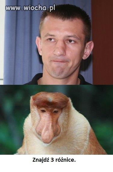 Małpy myślą