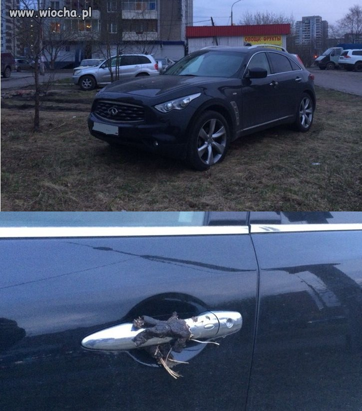 Ładnie zaparkował