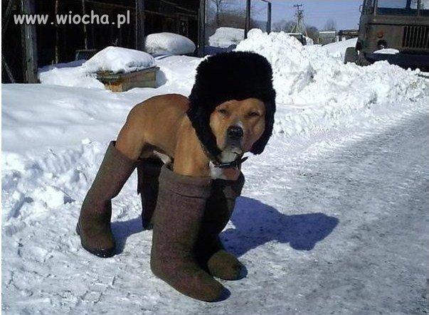 Nadchodzi zima.