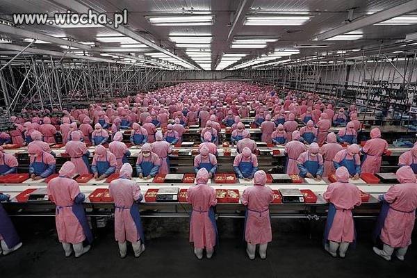 Obozy pracy w 21 wieku