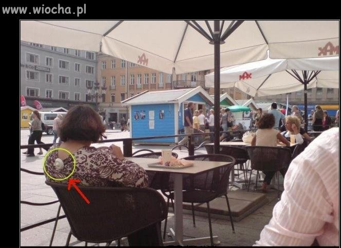 Kradzież bluzeczki  Poznań 2010r