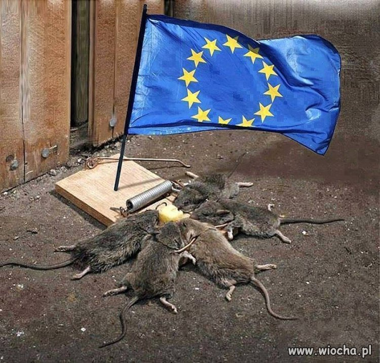 Tak widz� UE ...