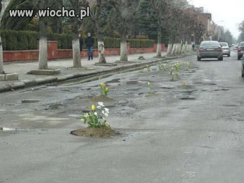 Wreszcie Wiosna...