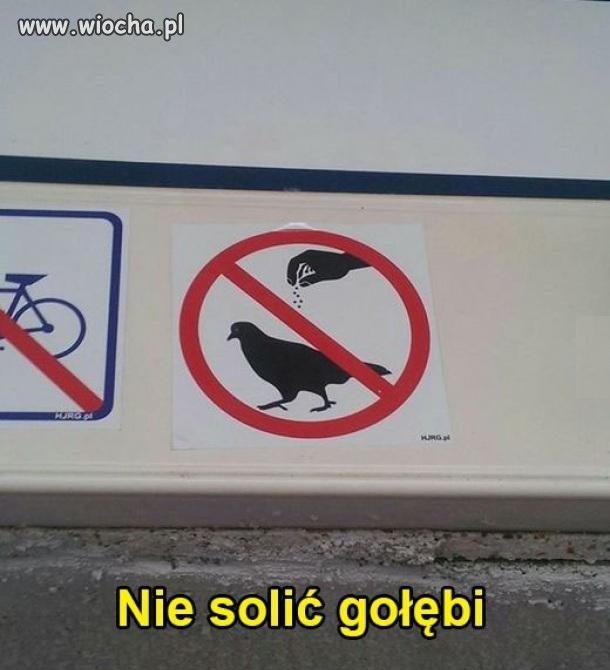 Nie sól gołębia