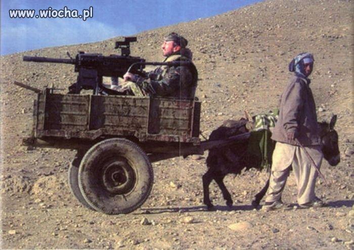 Ciapacki bojowy wóz piechoty