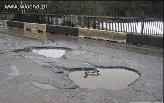 Pojezierze polskie