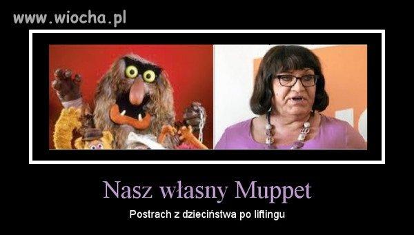Muppet Nasz Polityczny