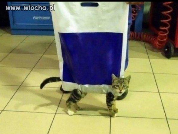 Pacz, Whiskas w promocji!