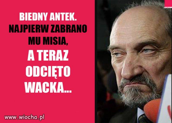Biedny Antoś.