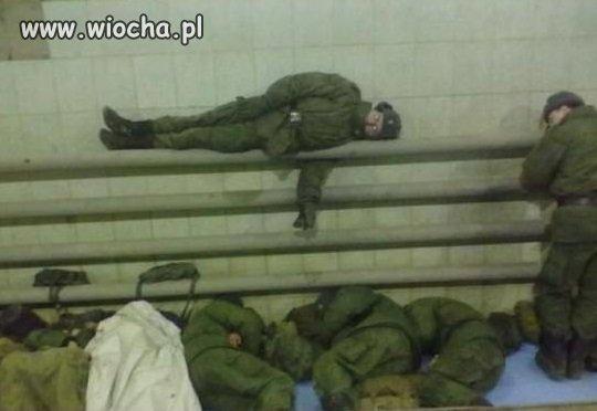 Ciepłolubni żołnierze