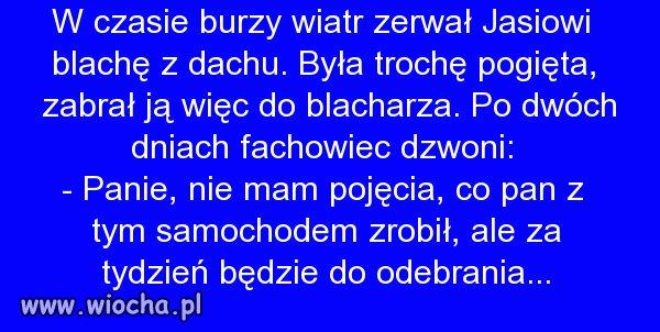 Polscy specjaliści