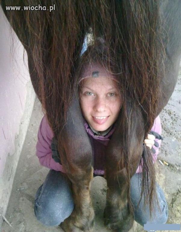 Zdjęcie z koniem