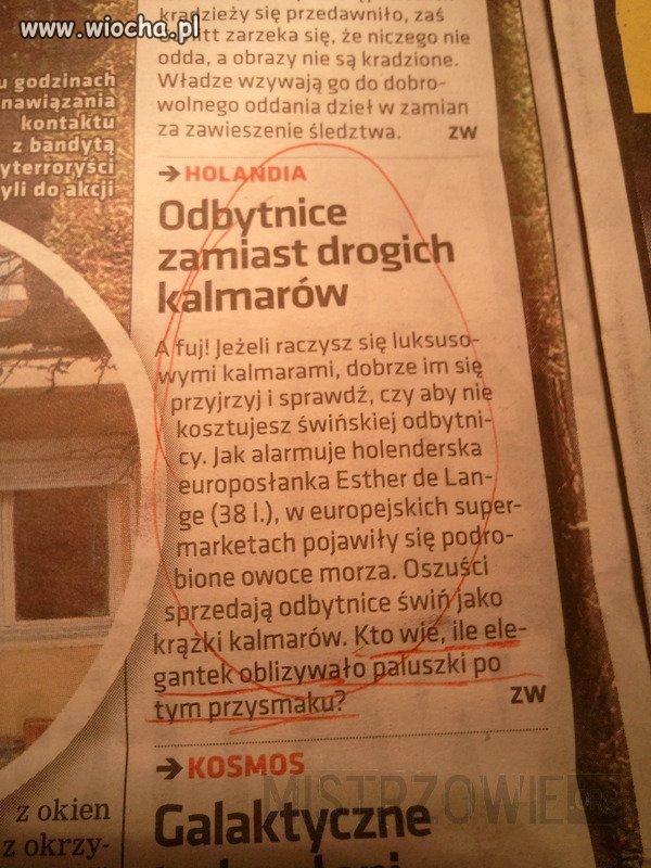 Świńskie odbyty udające kalmary.