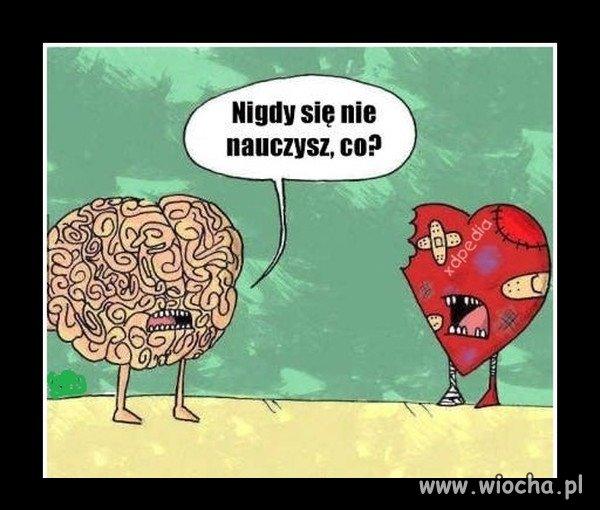 Serce i umysł, dwa różne światy